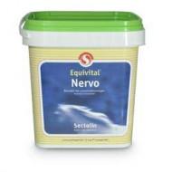 equivital nervo 1kg
