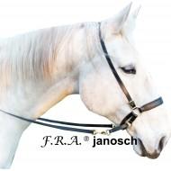F.R.A. bitloos hoofdstel janosch