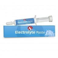 Electrolyte pasta