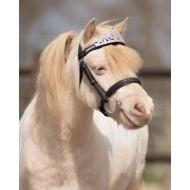 QHP kroon paard