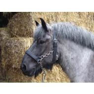 ideal ketting halster trekpaard